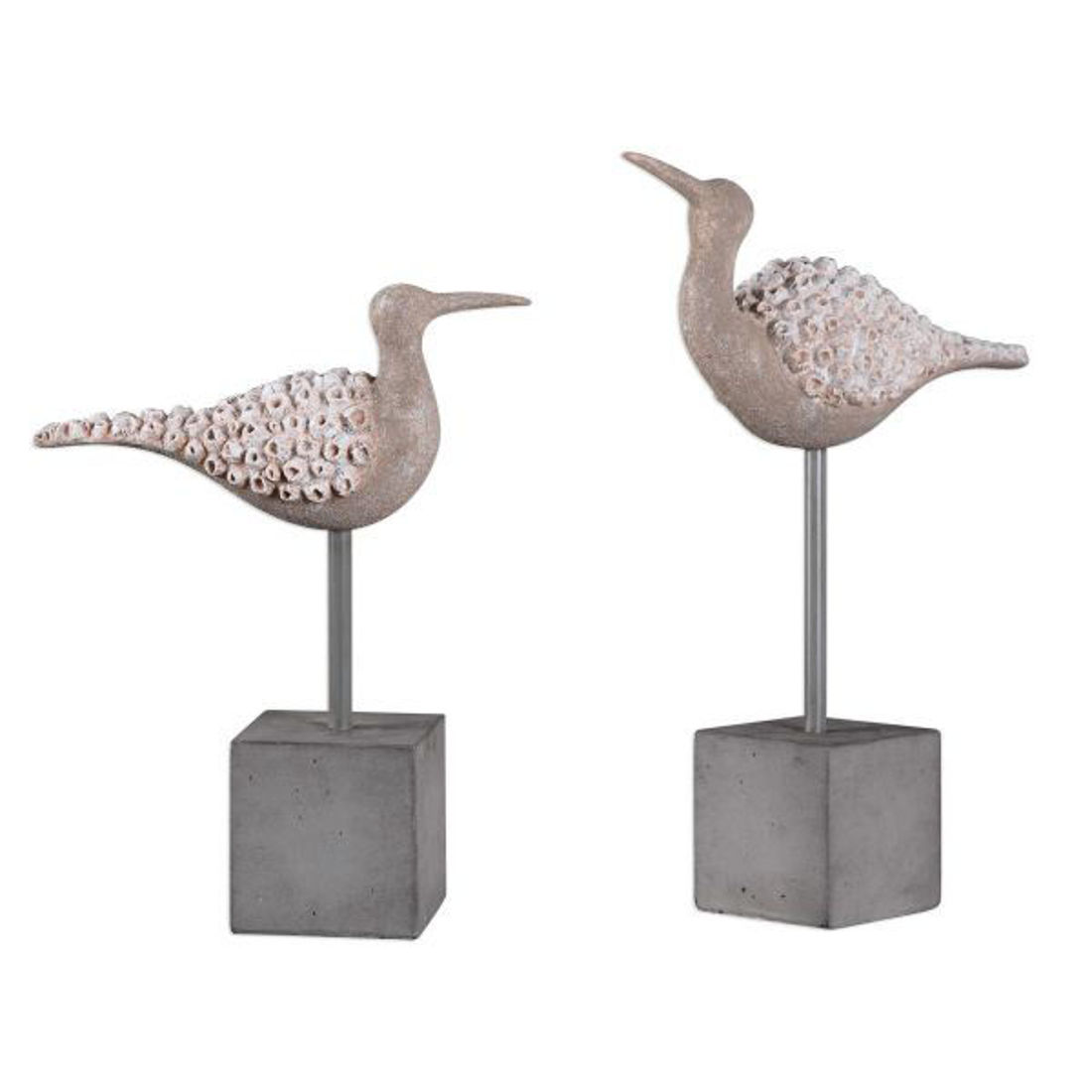 Picture of SHORE BIRDS